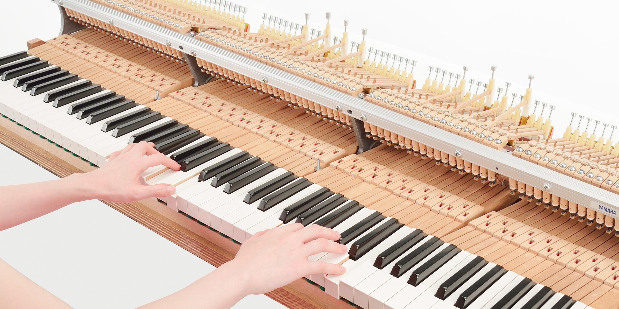 Foto Ein Hybrid-Piano, das sich nicht mit Annährungsversuchen zufrieden gibt. AvantGrand nutzt eine echte Flügelmechanik.